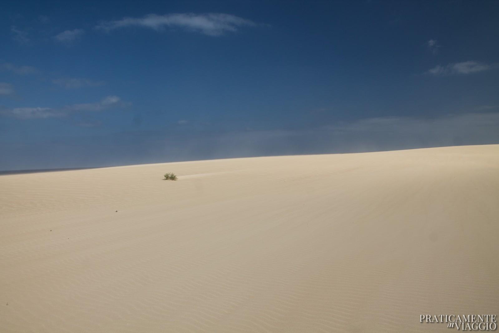 Dune di Corralejo Fuerteventura